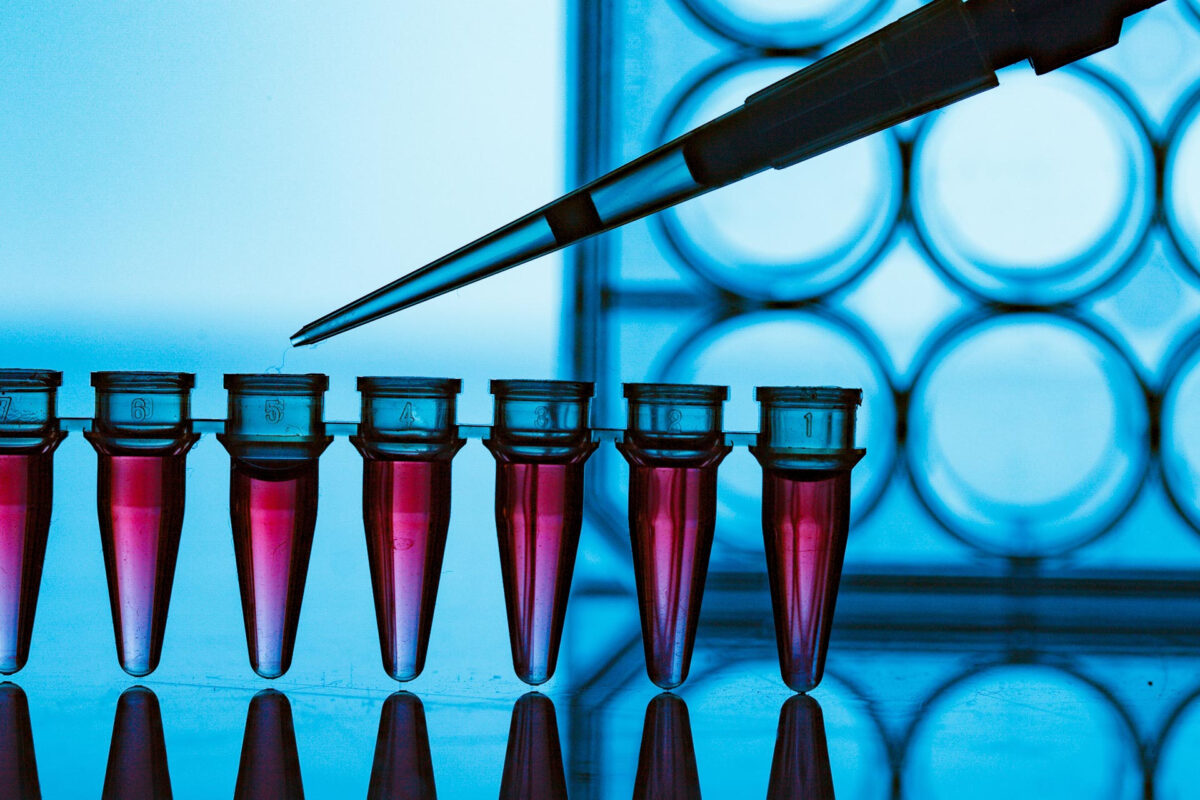 Picture of pcr containers containing red liquid in a laboratory table